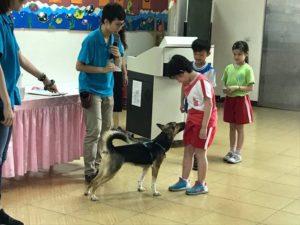 生命教育 大雅國小 療癒犬2