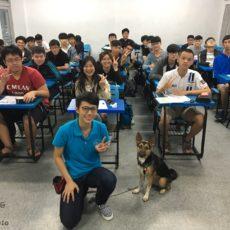 逢甲大學諮商中心 療癒犬 體驗