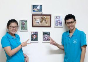 媒體報導 療癒犬 療癒師